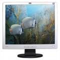 Hewlett Packard HP L1906 19 Inch LCD Monitor